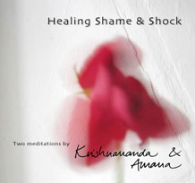 Healing Shame and Shock Audio CD