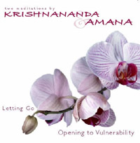 Letting Go Audio CD